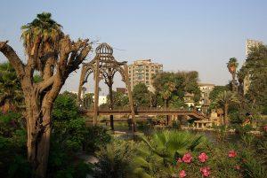 Rhoda Island, Cairo